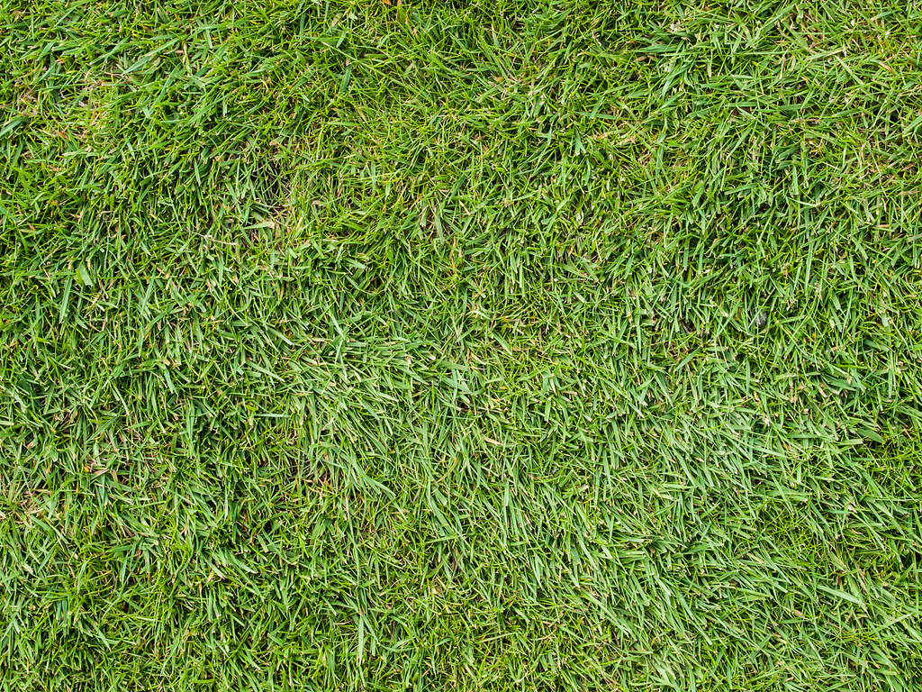 Free Wallpaper 3d Hd Grass Texture Grass Texture Permission To Use Please