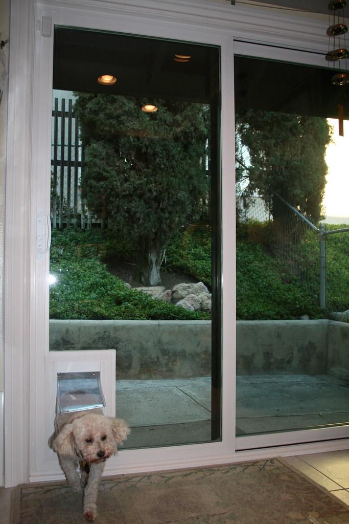 sliding glass door with doggie door