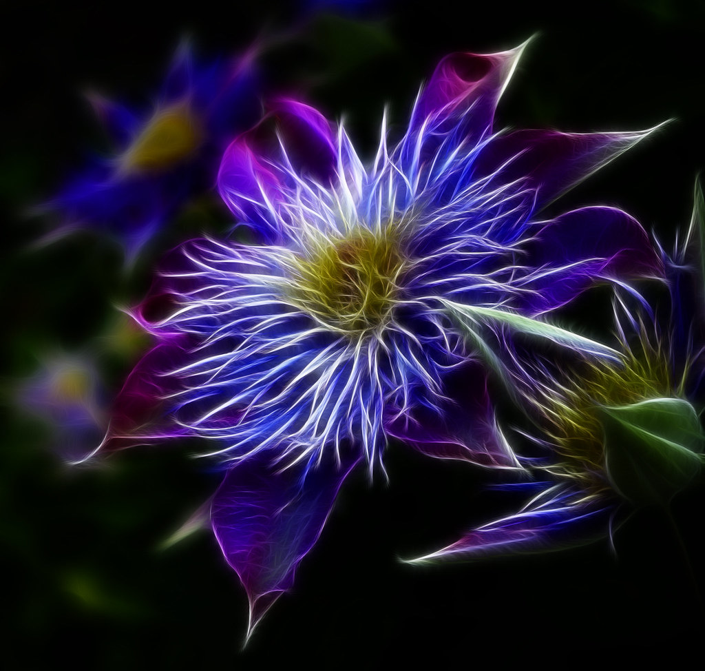3d Fractal Wallpapers Hd Glowing Flowers Explored Thanks Everyone So Here Is A