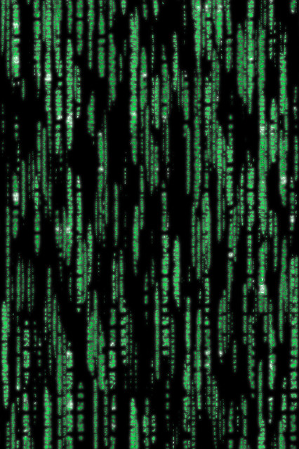 Matrix Falling Code Wallpaper Matrix Iphone Background Red Pill Or Blue Pill