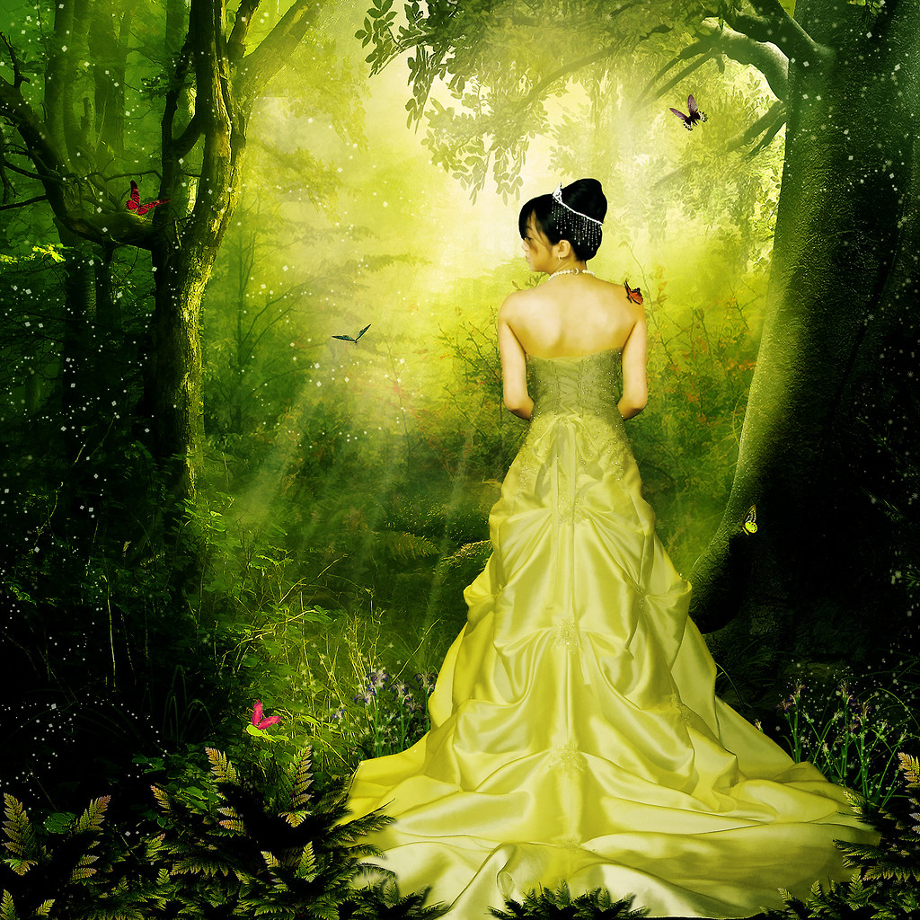 3d Fantasy Girl Wallpapers Enchanted Forest 147 365 Photo Manipulations Project
