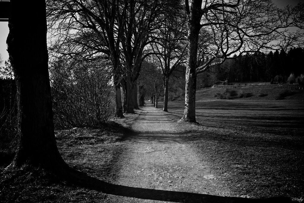 Dark 3d Wallpaper Sad Road Ricardo Martins Flickr