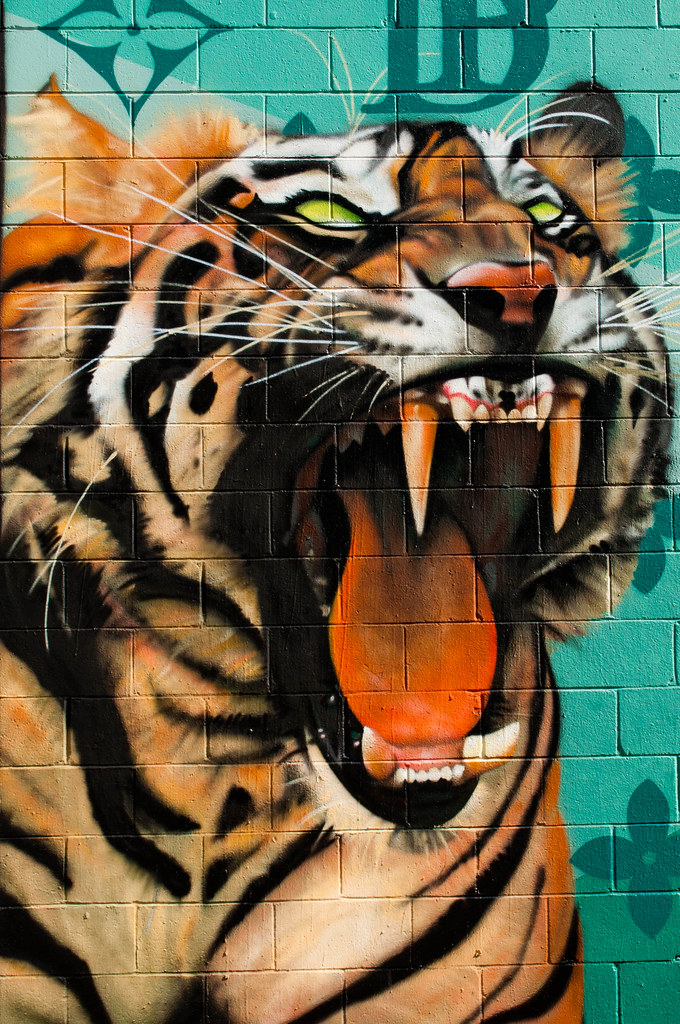 Awesome 3d Art Wallpaper The Tiger In The Closet Tom Check Flickr