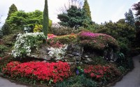 Famous Rock Garden at Leonardslee Gardens, West Sussex, En ...