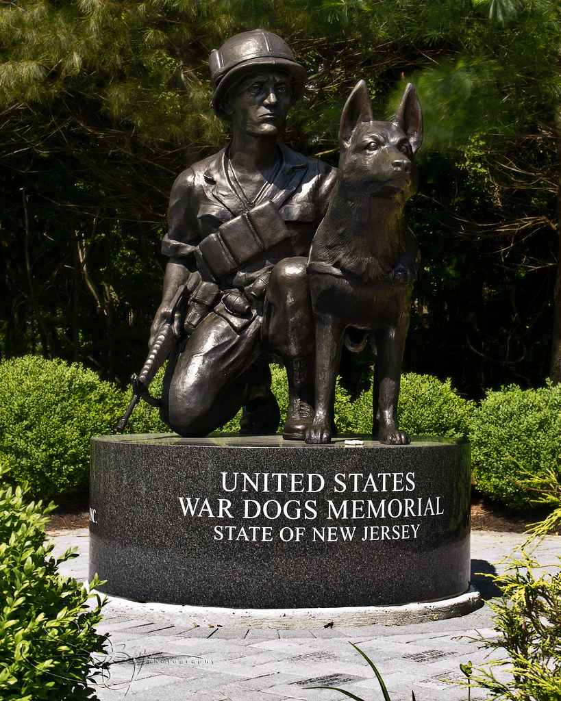 3d Tunnel Wallpaper War Dog Memorial Military Working Dogs Have Been