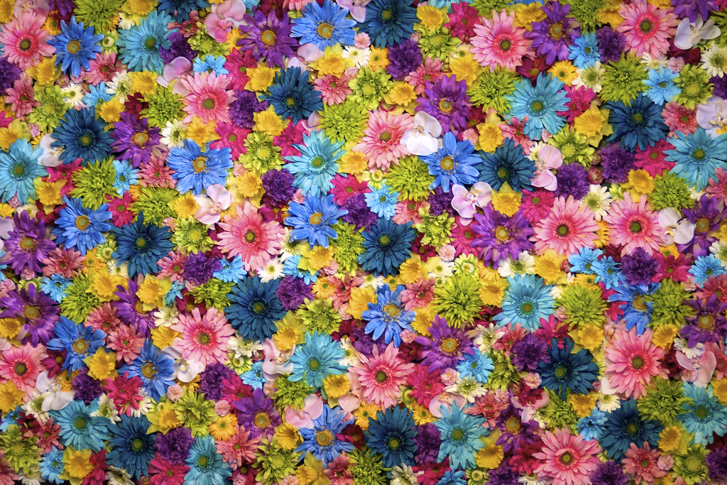 3d World Map Wallpaper For Pc Macy S Spring Flowers Nick Harris Flickr