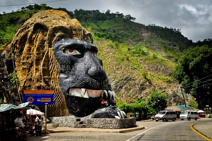 3d White Lion Wallpaper Lion S Head Baguio Benguet 665 Baguio City Benguet