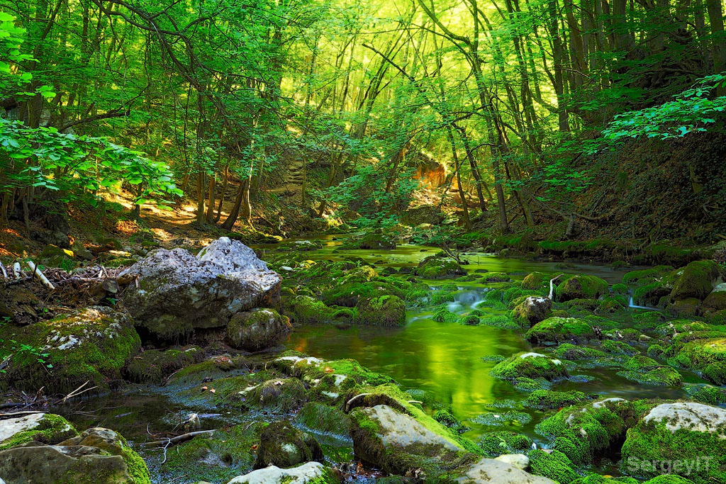 3d River Wallpaper Magic Green Forest And Water Stream With Mossy Stones Flickr