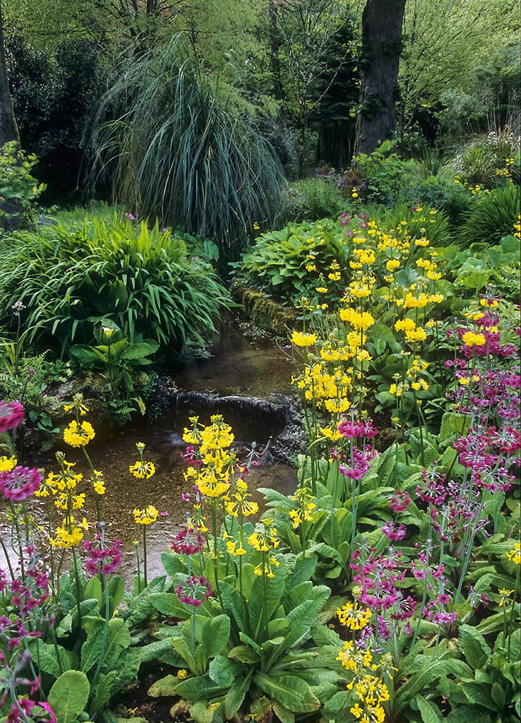 Free 3d Spring Wallpaper Water In English Gardens 25 Of 33 Trengwainton Gardens