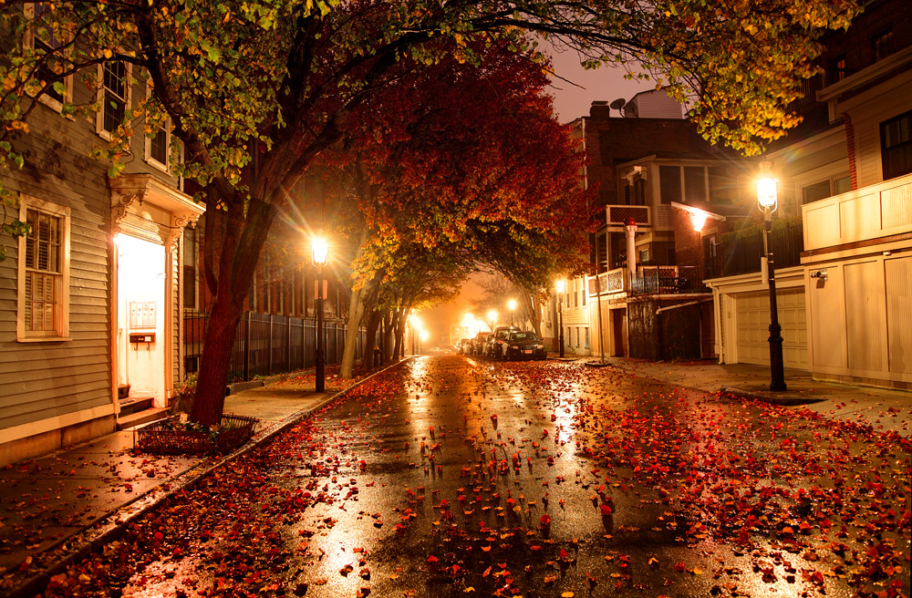 1920x1080 Fall Urban Wallpaper City Street Autumn Leaves On A City Street In Boston