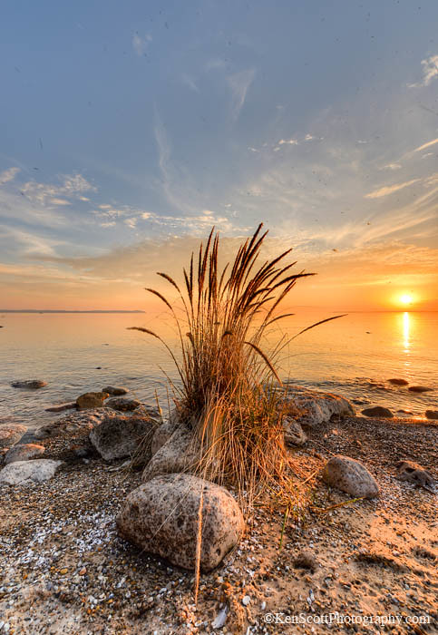 Fall Facebook Wallpaper Lake Michigan Beach Grass Sunset Ii The Back Page 6