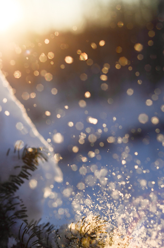 Free Falling Snow Wallpaper Snow Bokeh Erica Flickr
