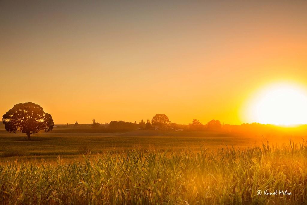 Beautiful 3d Wallpaper Iphone 6 221 Of 365 Project Summer Sunset At The Farm Sunset En