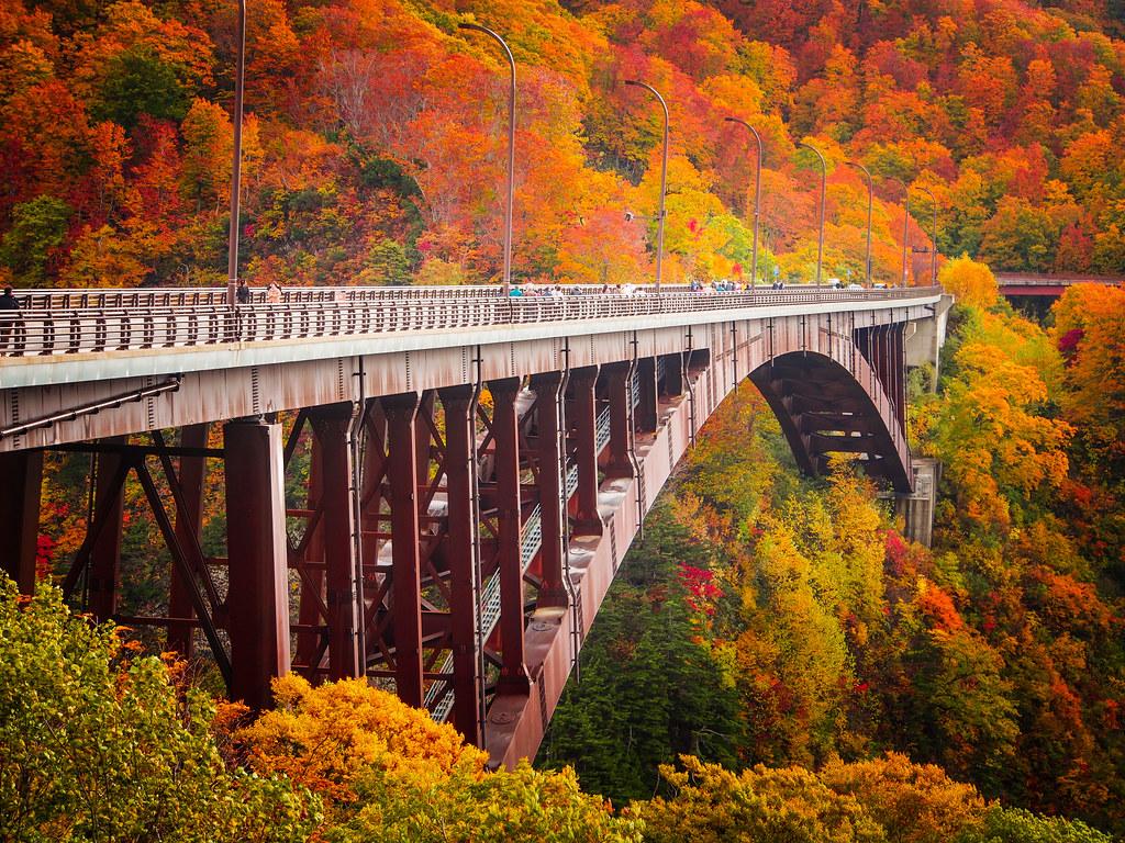 Free Wallpaper Fall Scenes Autumn Arch Jogakura Ohashi Bridge In Aomori Prefecture