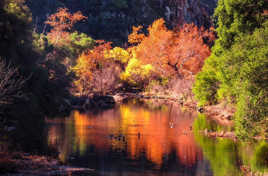 3d Fall Desktop Wallpaper California Fall Colors Autumn Leaves In California Flickr