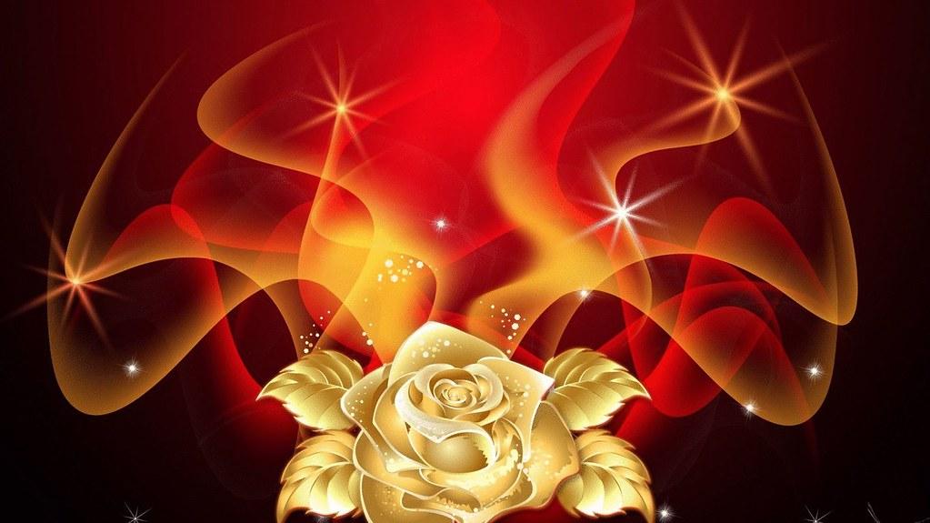 3d Hd Wallpapers Flowers Rose Golden Rose Flame Maf04 Flickr