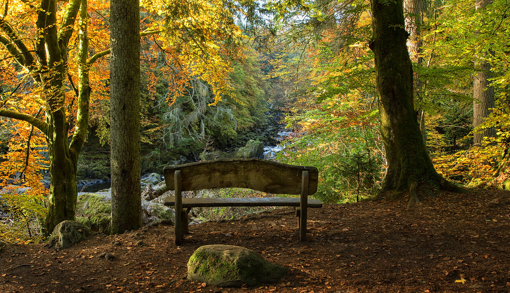 Fall Foliage Hd Wallpaper The Hermitage Scotland The Hermitage Officially The
