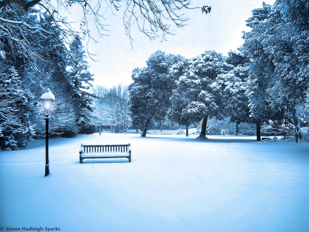 3d Hd Scenery Wallpapers We All Wish For Narnia In Our Own World Syon Park Winter