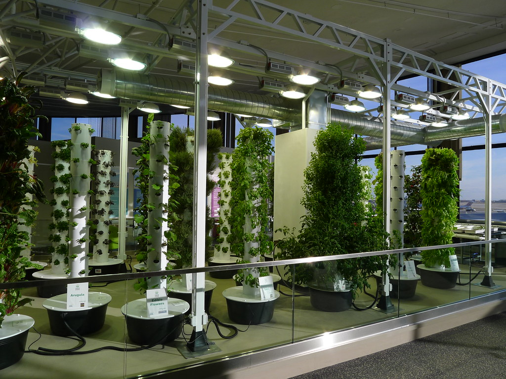 Hydroponic Dünger 20120208 1647 Chicago O 39hare Airport Vertical Farm Flickr