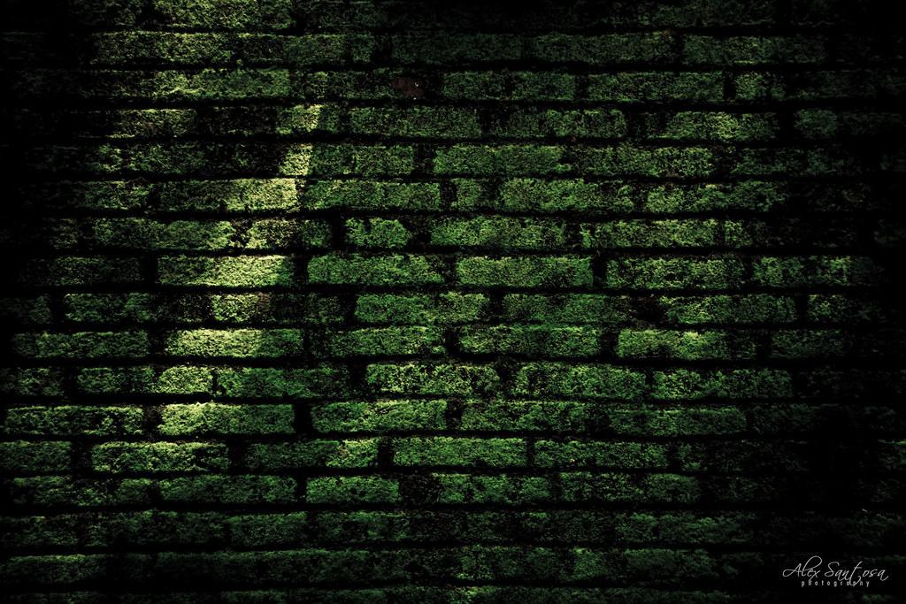 Wallpaper Full Hd Abstract Green Wall Old Brick Wall Full Of Moss Alex Santosa