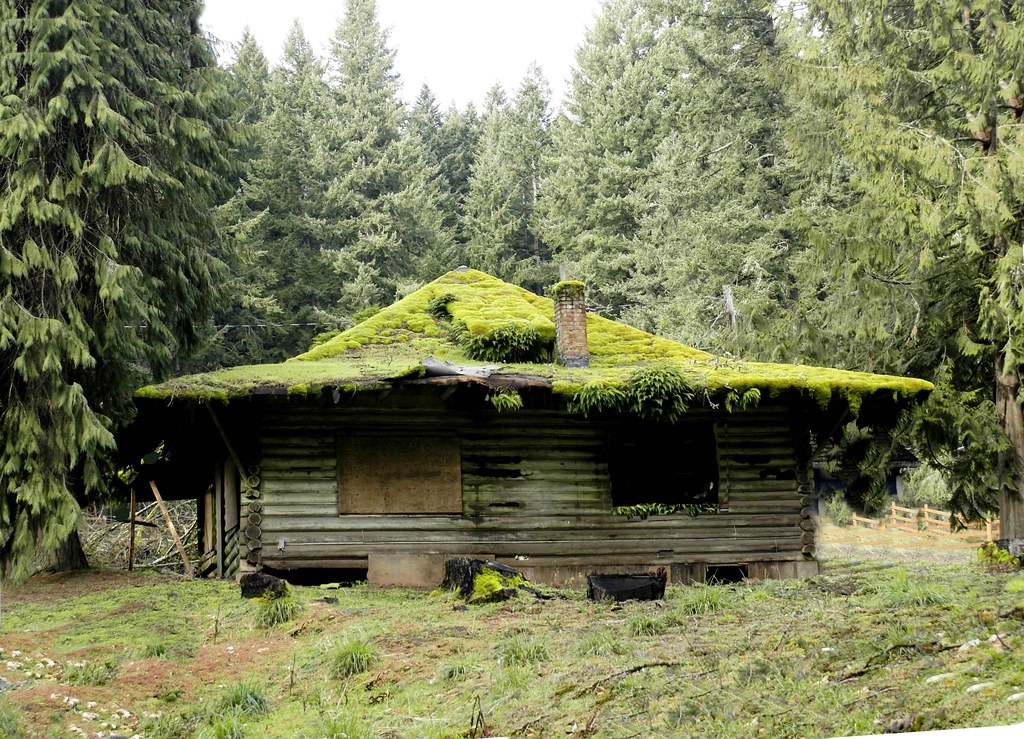 Free Wallpaper Old Cars Mountain Cabin Once A Family Getaway This Mossy Roofed