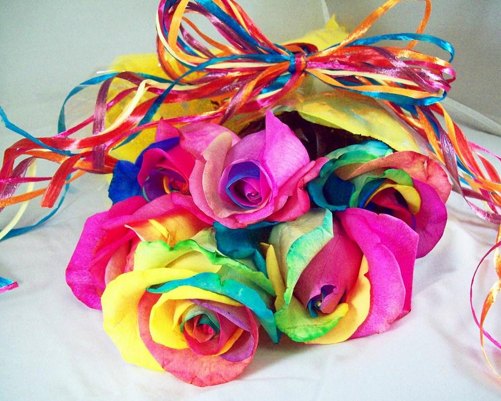 Drops Rainbow 3d Wallpaper Rainbow Roses For Valentine S Day Nicholas Got Me A