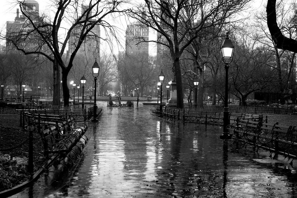 Central Park Fall Wallpaper Washington Square Park In The Rain New York Ny February