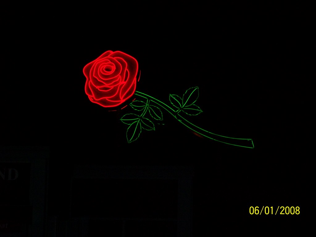 Wallpaper Falling Off 5 18 12 The Portland Rose Neon Sign Taken From The Deck