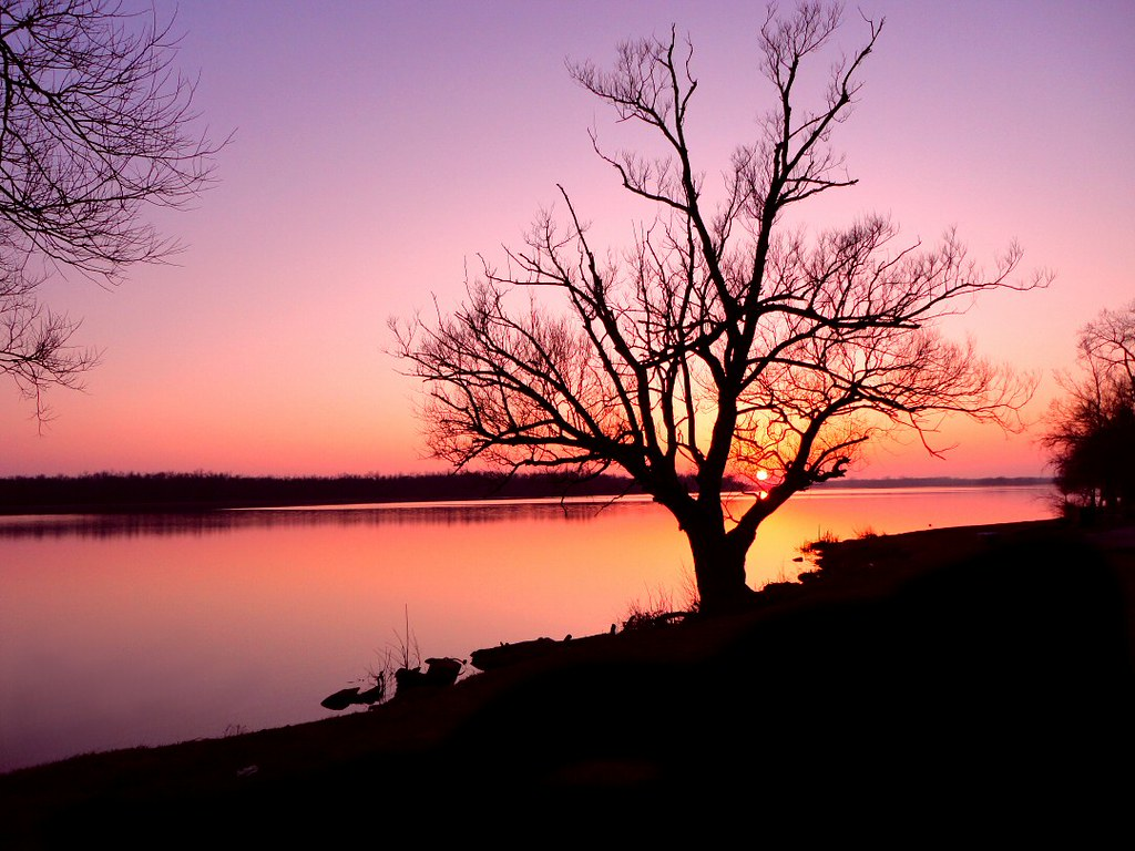 3d Nature Sunset Wallpaper Tree Sunset A Lovely Early Spring Sunset By The River