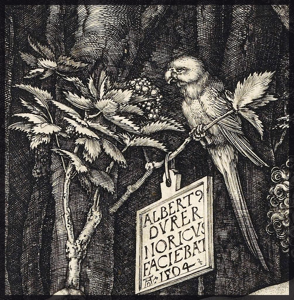 Danish Name Wallpaper 3d D 252 Rer The Fall Of Man Adam And Eve 1504 Engraving Det
