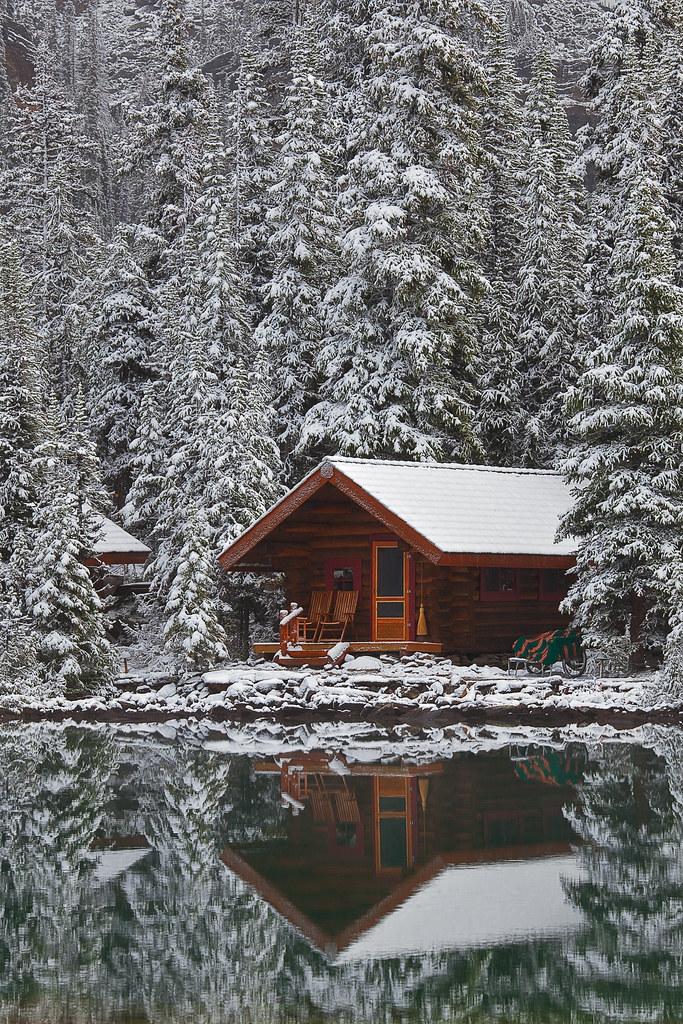 Wild Forest 3d Wallpaper Rustic Cabin Of Lake O Hara Lodge In Snow Elegant Rustic