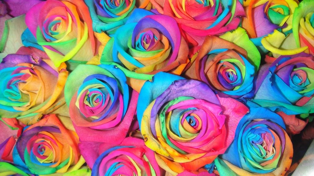 3d Rainbow Psychedeli Wallpaper Rosas De Colores Ojos Marrones2010 Flickr