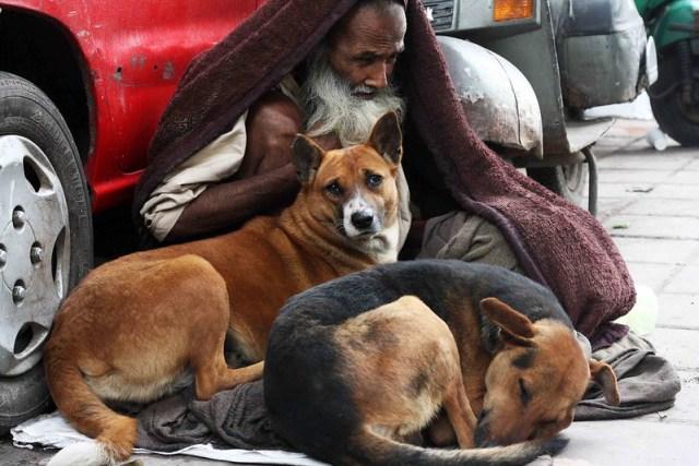 Mission Delhi Update - The Second Life of Kutte Walle Baba, Hazrat Nizamuddin Basti