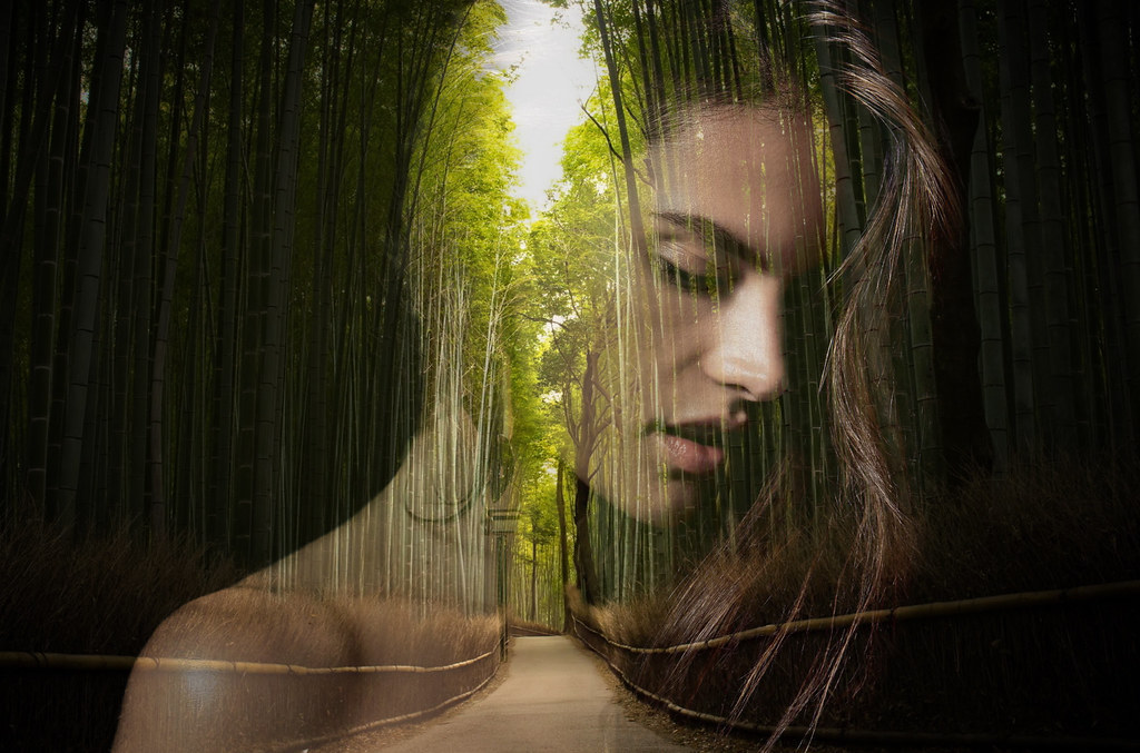 Girl Image Wallpaper Free Download Forest Wanderer It Could Probably Look Better But Here S