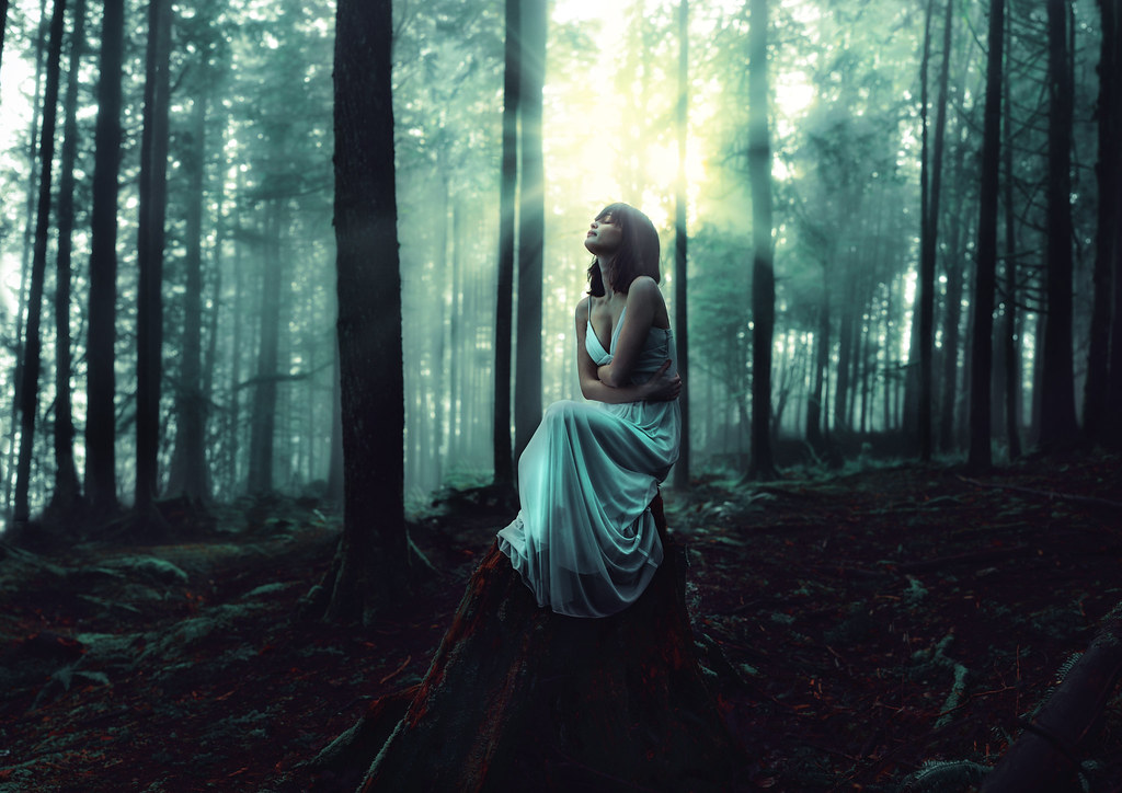 Beauty Girl In The World Wallpaper The Whispering Woods 36 52 Being Solitary Is Being