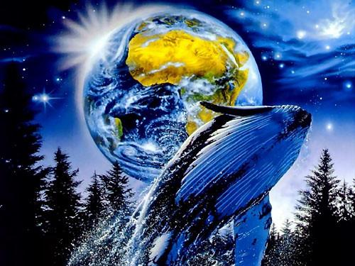 3d Star Wallpaper 書籍『ラッセンとは何だったのか?―消費とアートを越えた「先」』エコロジストのサーファー画家でハワイの海やイルカの絵を
