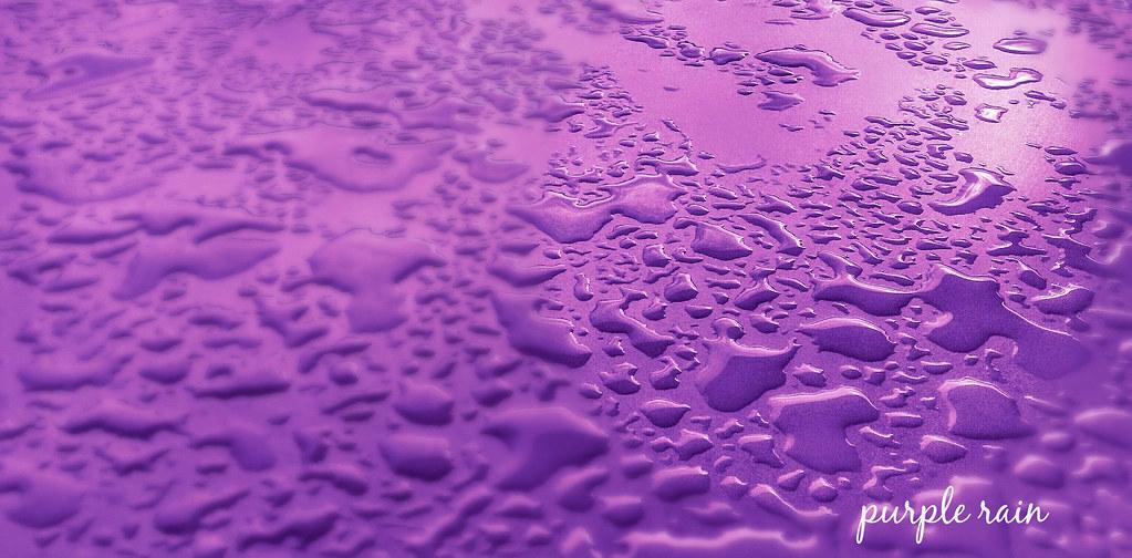Wallpaper Purple 3d Purple Rain Vassilis Flickr