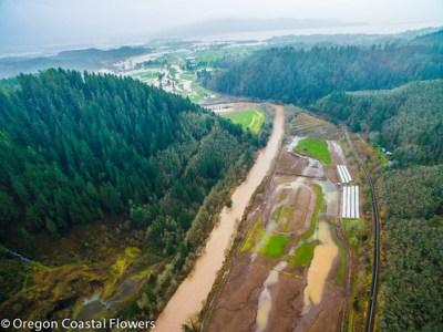 洪水造成的损失