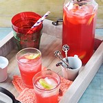 Summer Cranberry Lemon Fizz