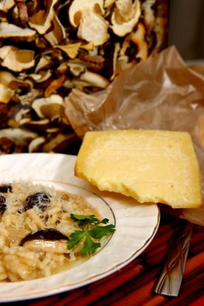 wild foraged porcini risotto with pecora cheese