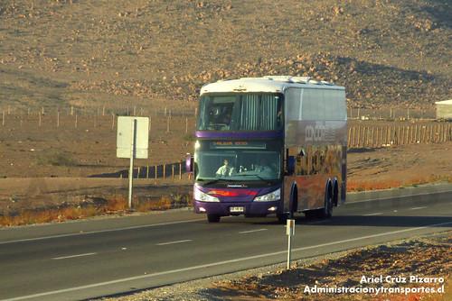 Condor - Desierto de Atacama - Modasa Zeus / Mercedes Benz (FFVR26)