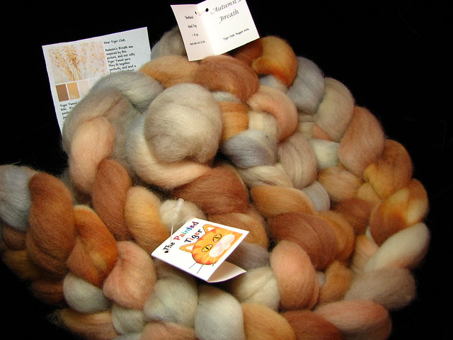 Autumn's Breath - August 2016 Tiger Club - Shetland Wool Combed Top