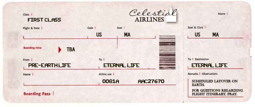 blank airline ticket template - free ticket template printable