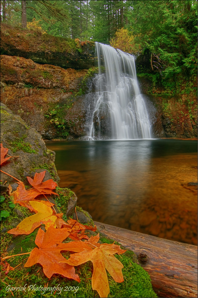 Multnomah Falls Wallpaper 20 Stunning Photos Of Oregon S Fall Foliage That Oregon Life