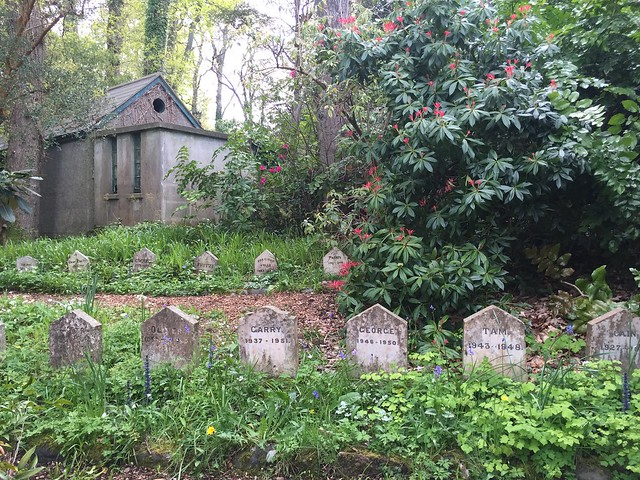 pet cemetery in Mount usher Gardens Wicklow, with small, pointy shaped tombstones marking the final resting place of the family pets