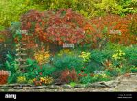 Autumn flower garden with Sumac trees and tall Japanese ...