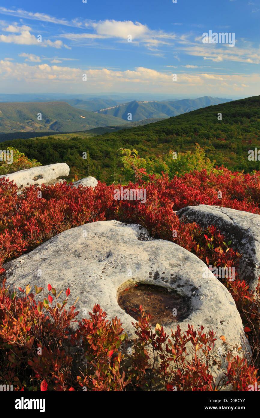 Autumn Fall Live Wallpaper Bear Rocks Preserve Dolly Sods Wilderness Hopeville