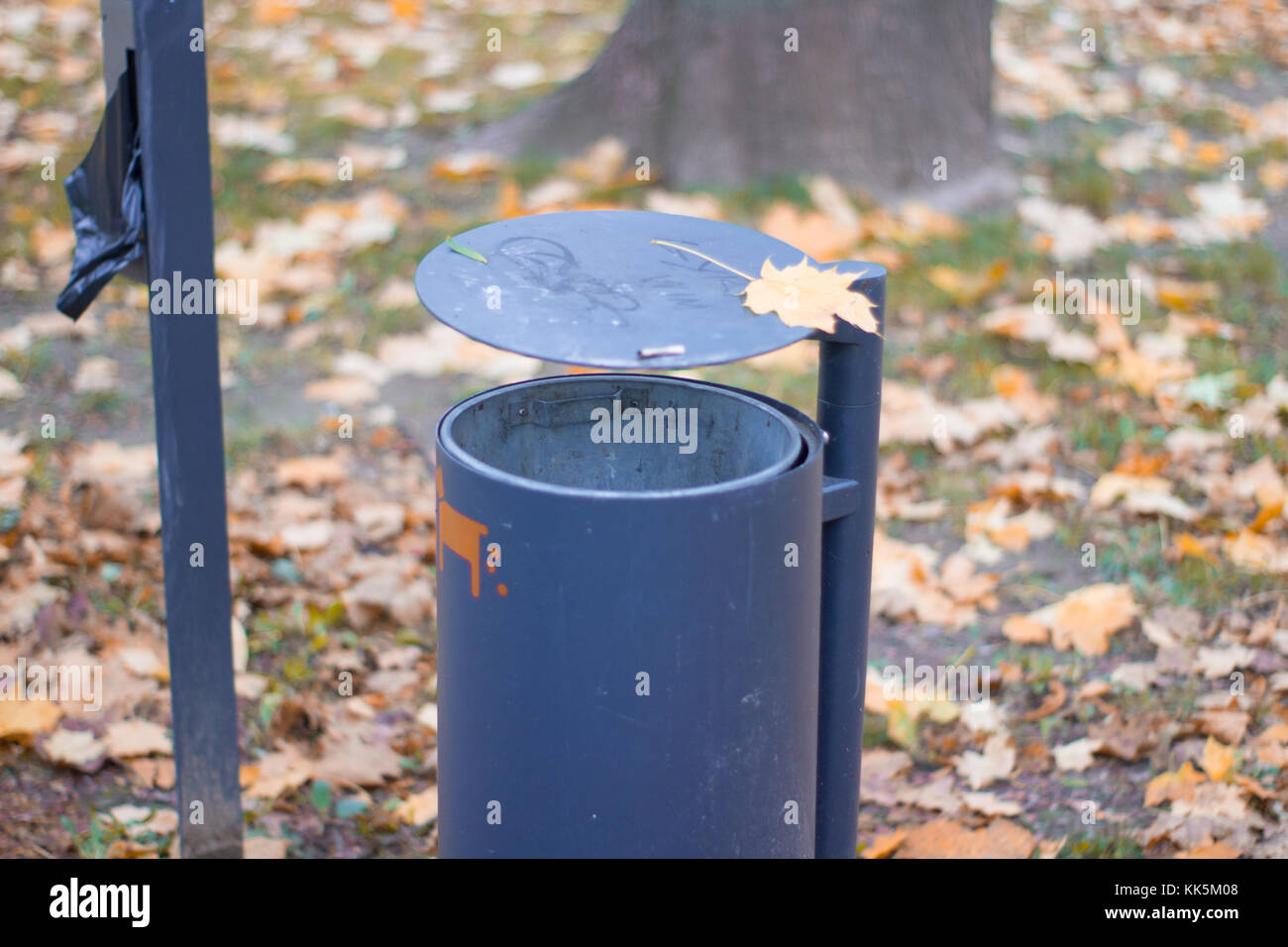 Attractive Trash Cans Garbage Can Beautiful Stock Photos And Garbage Can Beautiful