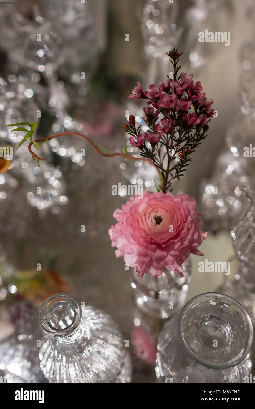 Jarrones De Cristal Decorados Tabla Color Rosa Decoradas Con Flores De Romero Y Clavel En