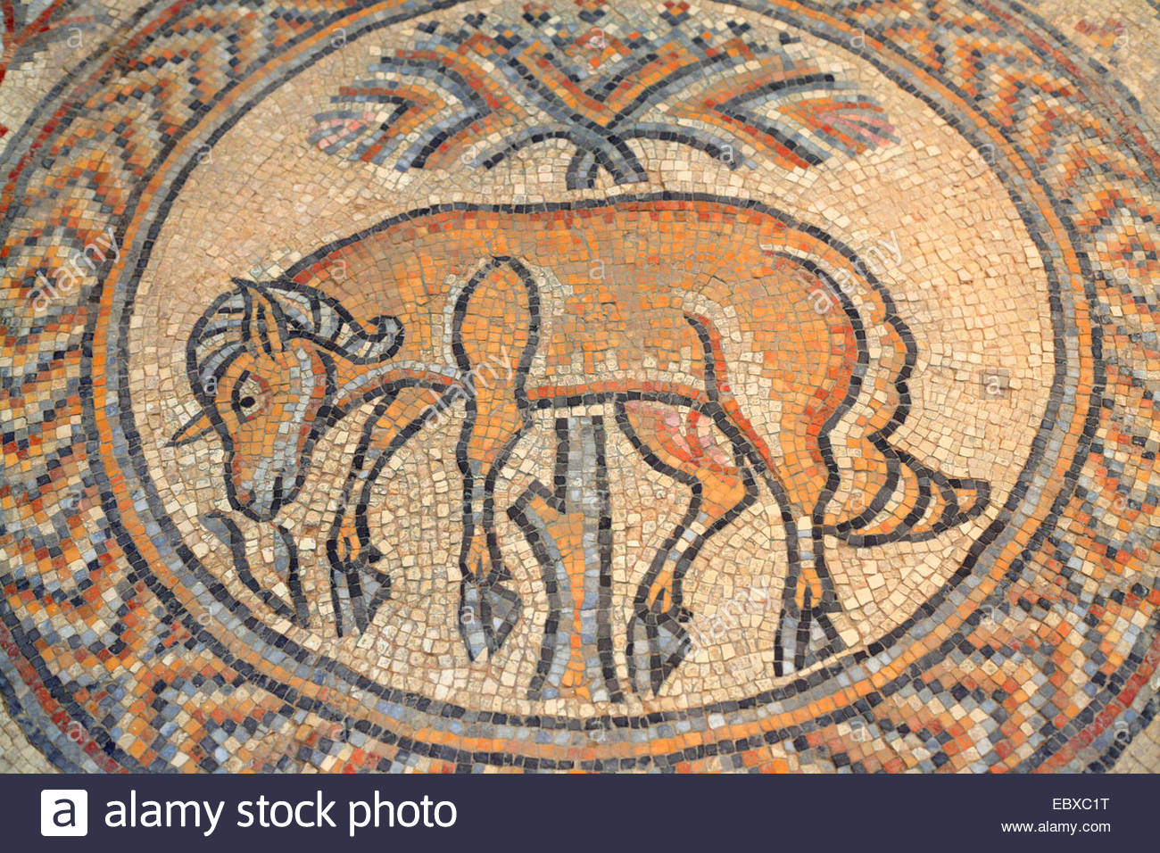 Mosaique Del Sur Mosaic Tile Animal Photos And Mosaic Tile Animal Images Alamy